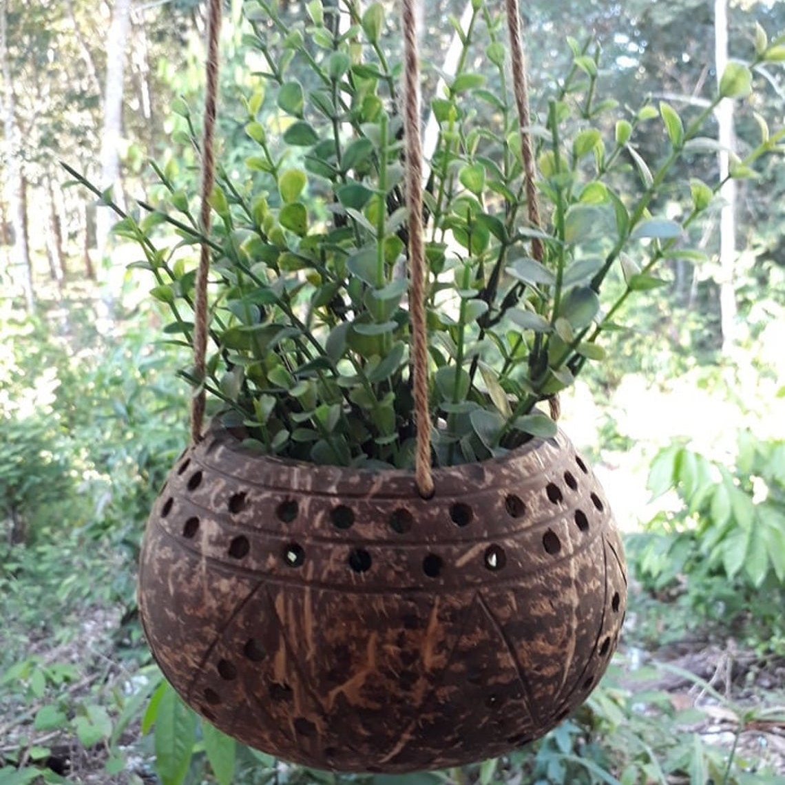 Hanging Coconut Shell Flower Pot